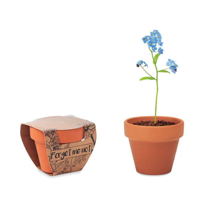 MO6146-40 FORGET ME NOT